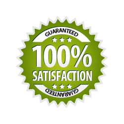 Satisfaction Guarantee 100% - Burst Badge Green